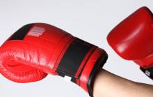 Руководство по выбору боксерских перчаток